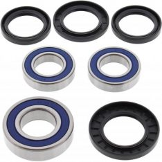 WHEEL BEARING & oil seal & dust seal KIT 25-1392 REAR