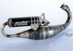 Polini Big Evolution Limited GP1 50 2001-2003
