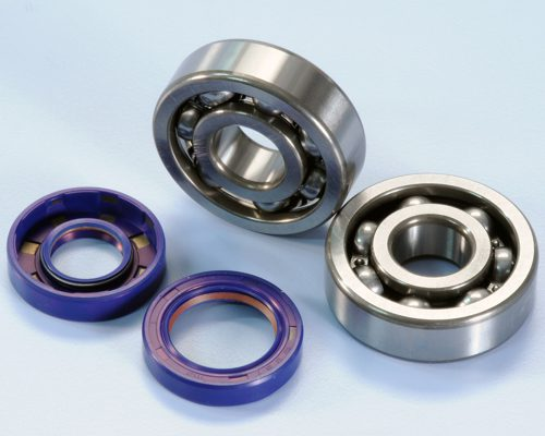 Polini Crankshaft bearing and oil seal kit Aprilia RS 50 AM6